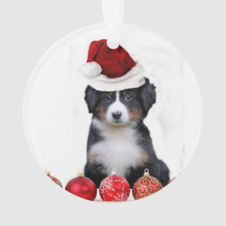 De Hond van de Berg van Bernese van Kerstmis Ornament