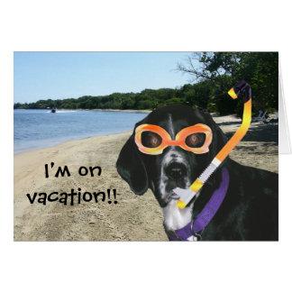 De Hond van de scuba-uitrusting bij het Strand Briefkaarten 0