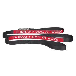 De Hond van de therapie op het Werk (leiband) Hondenlijn