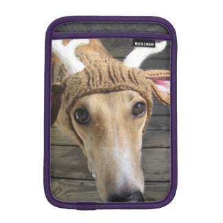 De hond van herten - leuke hond - whippet