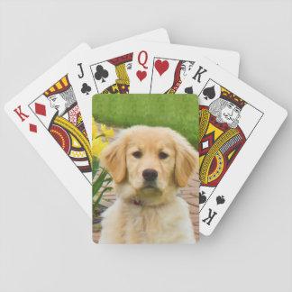 De Hond van het golden retriever Speelkaarten