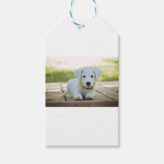 De Hond van het puppy Cadeaulabel