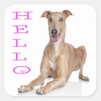 De Hond van het Puppy van de Windhond van Hello Vierkant Sticker