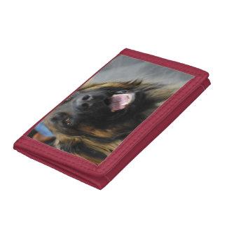 De Hond van Leonberger Drievoud Portemonnee