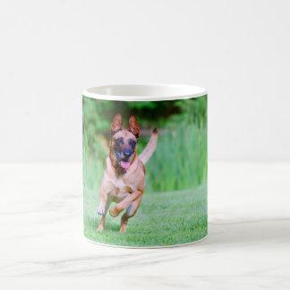 De hond van Malinois het lopen Koffiemok