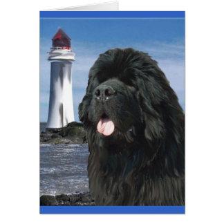 De hond van Newfoundland van de Brug van de Briefkaarten 0