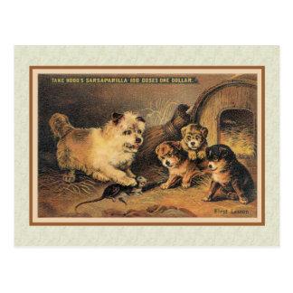 De Hond van Terrier van de steenhoop en Haar Puppy Briefkaart