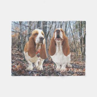 De Honden van Basset Hound in de Deken van de