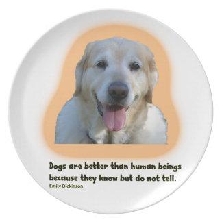 De honden zijn beter dan mensen bord