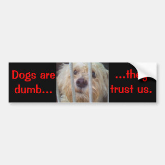 De honden zijn Stom Bumpersticker