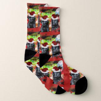 De hondsokken van de Labradors van Kerstmis Sokken