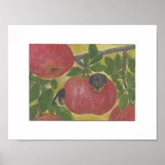 De hondworm van de tekkel in rode appelboom Doxie Poster
