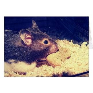 De hongerige Kaart van de Hamster