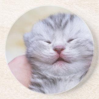 De hoofd pasgeboren zilveren slaap van de zandsteen onderzetter