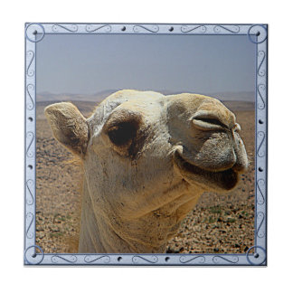 De HoofdTegel van de kameel Keramisch Tegeltje