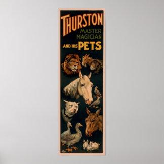De hoofdtovenaar van Thurston en zijn huisdieren Poster