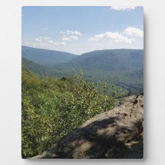 De Hooglanden Pennsylvania van de laurier Fotoplaat