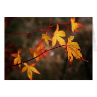 De huilende Kaart van de Nota van de Herfst