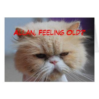 De Humor van de Perzische kat van Allan Brother Kaart