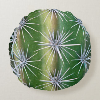 De Huntington Botanische Tuin, de Cactus van de Rond Kussen