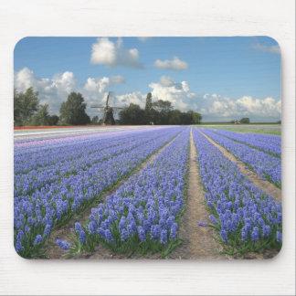 De Hyacinten van de Windmolen van Holland Muismatten