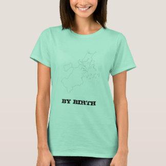 De Ierse grappige T-shirt van Boston,
