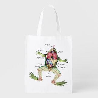 De illustratie van de Anatomie van de Kikker Boodschappentassen