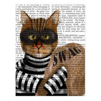 De Inbreker van de kat Briefkaart