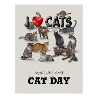 De internationale Dag van de Kat Briefkaart