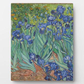 De Irissen die van Vincent van Gogh het Werk van Fotoplaat