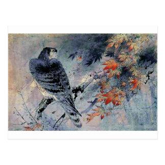 De Japanse druk van de Vogel van de valk Briefkaart