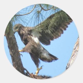 De jonge Stickers van de de yogarek van Eagle
