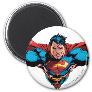 De kaapvliegen van de superman magneten