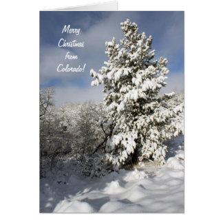 De Kaart van Colorado van Kerstmis