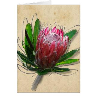 De Kaart van de Bloem van Protea van de koning