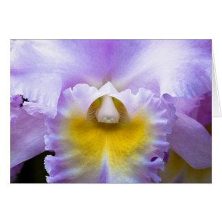 De Kaart van de Orchidee van Cattleya