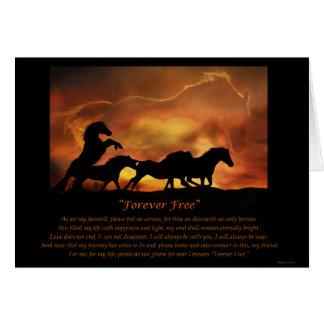De Kaart van de Sympathie van het paard