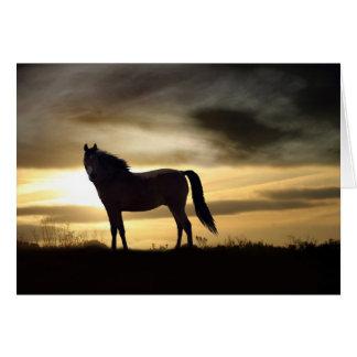De Kaart van de sympathie voor Verlies van Paard