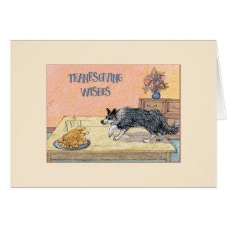 De kaart van de Thanksgiving, border collie hond