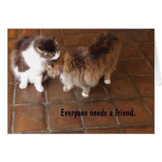 De Kaart van de vriendschap, de Katten van de