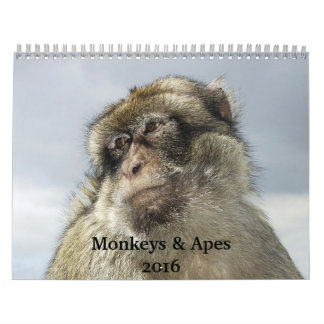 De Kalender van apen en van Apen 2016