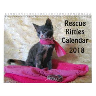 De Kalender van het Kat van de redding - Nieuw