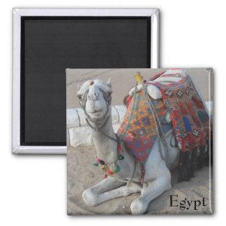 De Kameel van Egypte Magneet