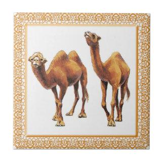 De kamelen a-gaan Tegel Keramisch Tegeltje