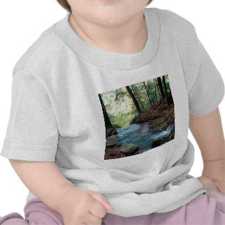 De Karnemelk van de rivier valt Delaware Gap New J Shirt