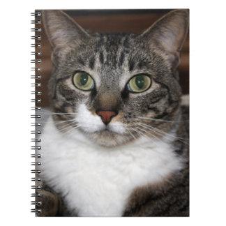 De Kat die van de gestreepte kat u bekijken het Ringband Notitieboek