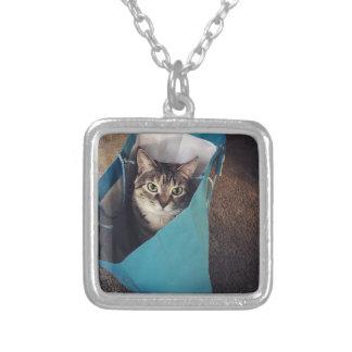 De kat is klaar om uit de zak te komen ketting vierkant hangertje