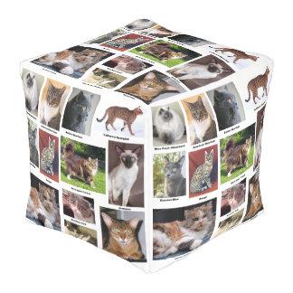 De kat kweekt het Volledige Ontwerp van de Foto Vierkante Poef