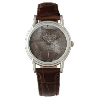 De Kat Lounging van de gestreepte kat buiten, Horloges