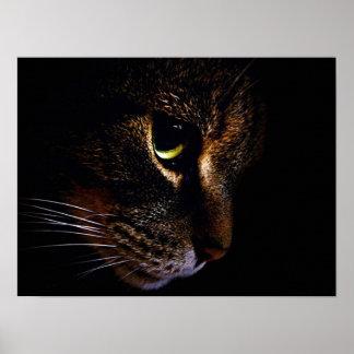 De kat poster